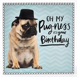 Oh My Pugness Birthday Card