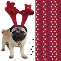 Pug Christmas Napkins Pack Of 10