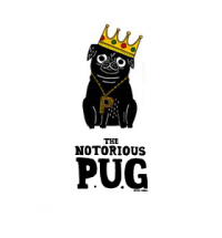 Notorious Black Pug Blank Card By Gemma Correll