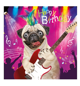 Pug Rock Star Birthday Card