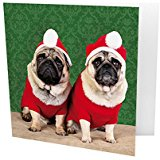 Two Santa Pug Christmas Cards