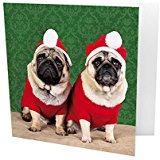 Two Santa Pug Christmas Cards