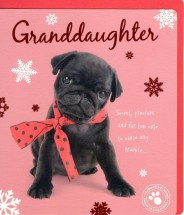 Pug Granddaughter Christmas Card