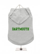 Dartmouth Unisex Hoodie (Available in 3 colours )