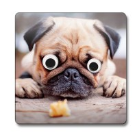 Googly Eyes Pug Coaster