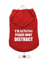 In Training Don't Distract Unisex Hoodie (Available in 3 colours )