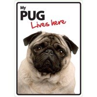 My Pug Lives Here Plastic Sign