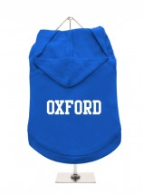 Oxford Unisex Hoodie (Available in 6 colours )