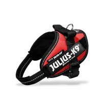 Julius IDC Powerharness – Size Mini – Red