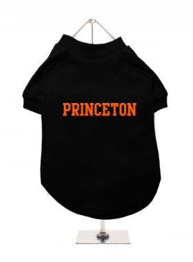 Princeton Unisex Hoodie (Available in 2 colours )