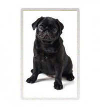 Black Pug Pup Fridge Magnet