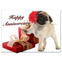 Pug Puppy Anniversary Card