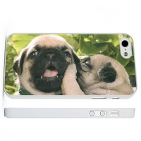 Pug whispers iPhone Cover (For all iPhone models)