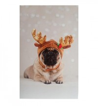 Reindeer Pug Christmas Card