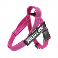 Julius IDC Belt Harness Pink