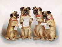 Singing Vintage Pugs Blank Card