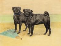 Vintage Black Pugs Blank Card