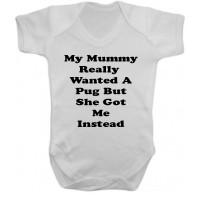 Funny Pug Babygrow (Newborn -12 months)