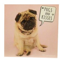 Cute Pugs & Kisses Birthday Card