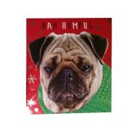 Bah Hum Pug Christmas Card