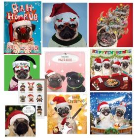 Luxury Christmas Card Bundle Pack Of Ten Worth £27