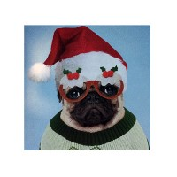 Bah Hum Pug Christmas Cards Pack Of 10