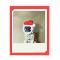 Santa Pug Beard Card