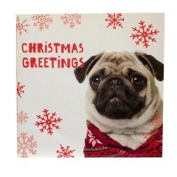 Christmas Sweater Pug Christmas Card