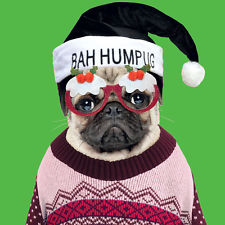 Luxury Green Glittered Bah Hum Pug Christmas Cards Pack Of 8