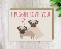 Funny Pug Blank Card For All Occasions
