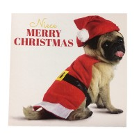 Pug Niece Christmas Card