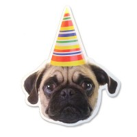 Party Pug Postcard For Any Occasion