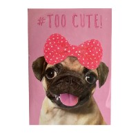 Cute Pug Card For All Occasions