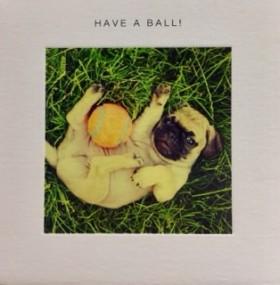 Have A Ball Pug Blank Card