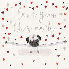 I Love You This Much Pug Valentines Day Card
