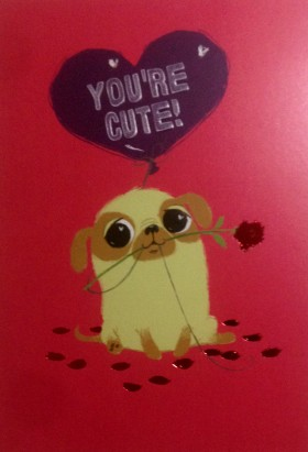Cute Pug Valentines Card