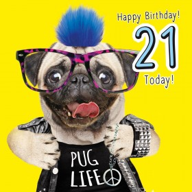 Pug 21st Fluffy Birthday Card