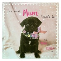 Black Pug Mothers Day Card