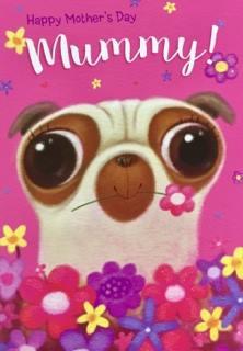 Large Pug Mothers Day Card
