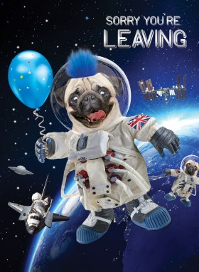 COOL SORRY YOU'RE LEAVING PUG CARD XXL!