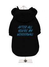 After All You're My Wonderwall Oasis Fleece Lined Hoodie