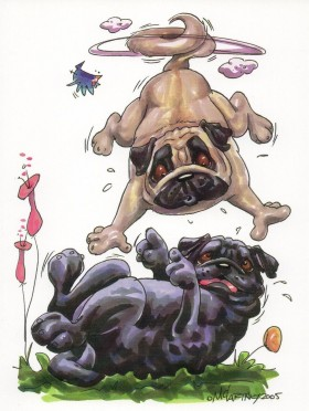 Crazy Pugs Blank Card For All Occasions