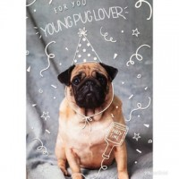 For A Young Pug Lover Birthday Card