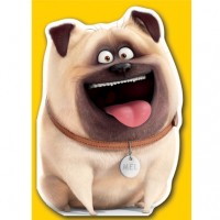 Mel The Pug Birthday Card