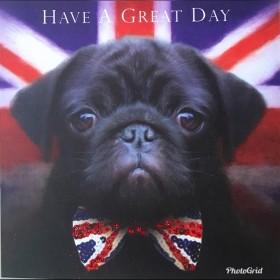 Black Pug Union Jack Blank Card
