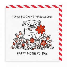 Cute Pug Mother's Card By Gemma Correll