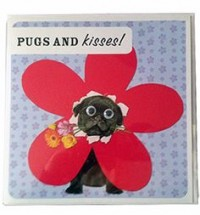 Cute Black Pug Birthday Card