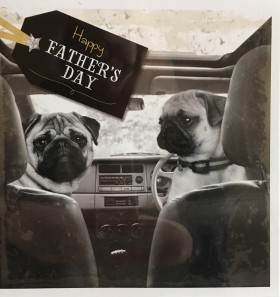 Cute Pug Black & White Fathers Day Card