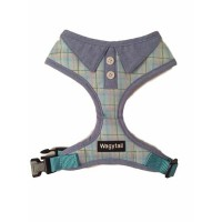 Blue Polo Wagytail Harness