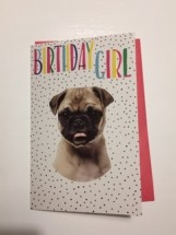Cute Pug Birthday Girl Card